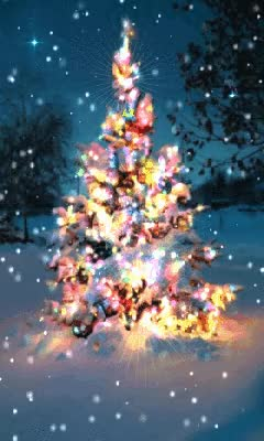 Watch and share Colorful Animated Christmas Tree GIFs on Gfycat