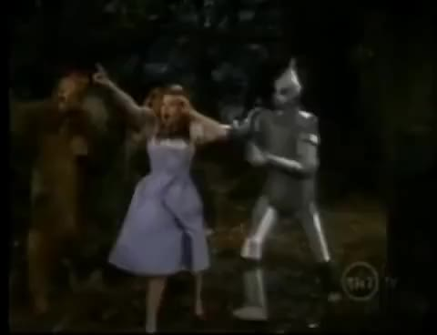 Watch and share Dorothy GIFs on Gfycat