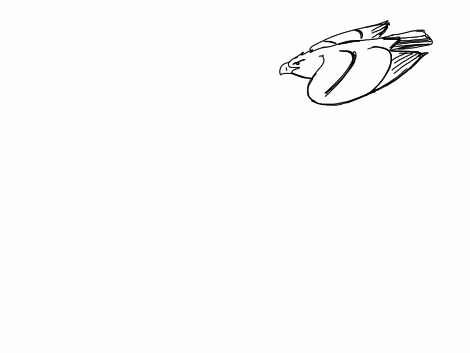 Landing Bird Animation