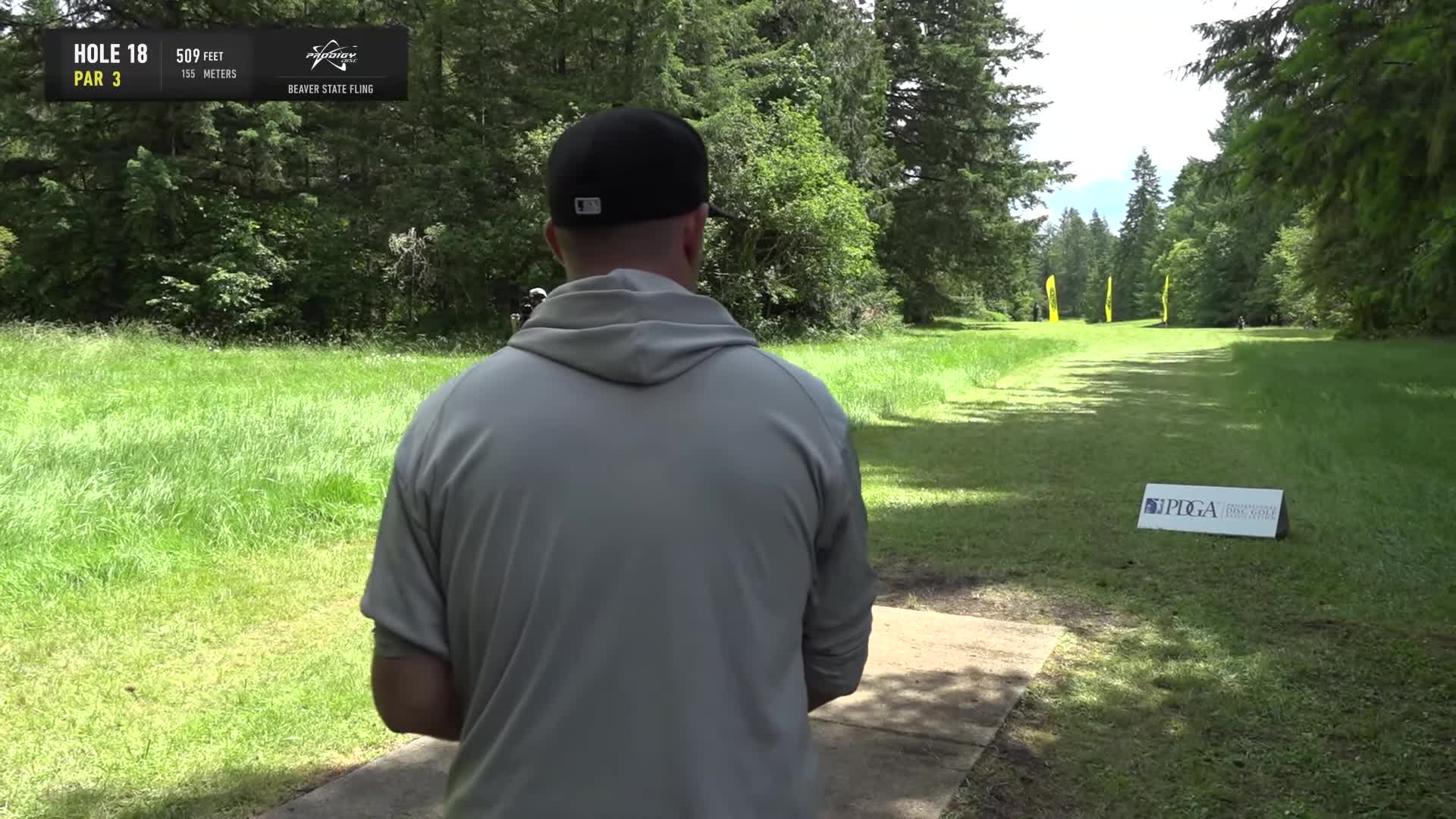 ace, bsf, dela, delaveaga, dgpt, dgwt, disc, disc golf, frolf, hole in one, masters cup, mcbeast, milo, nate sexton, nt, paul mcbeth, pdga, simon lizotte, tournament, worlds, 2019 Beaver State Fling - Round 1 Part 2 - Scott Withers hole 18 roller drive GIFs