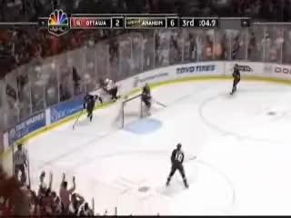 Watch and share Anaheim Ducks GIFs on Gfycat