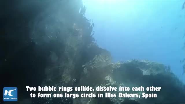 Watch and share Stunning Footage In Slow Motion Two Bubble Rings Collide GIFs by cenotaph on Gfycat