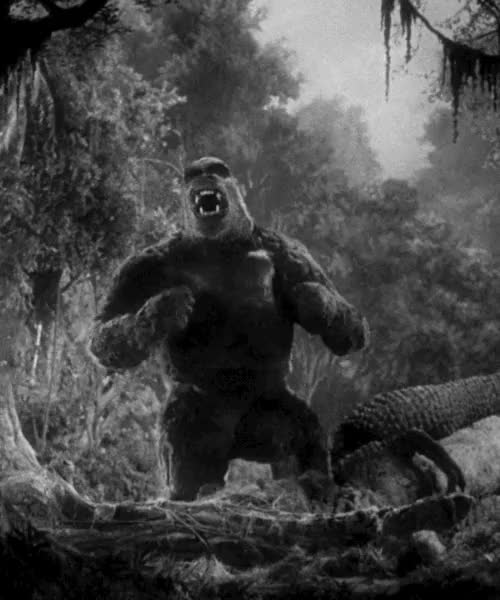 Watch and share King Kong Gif GIFs and Reaction Gif GIFs on Gfycat