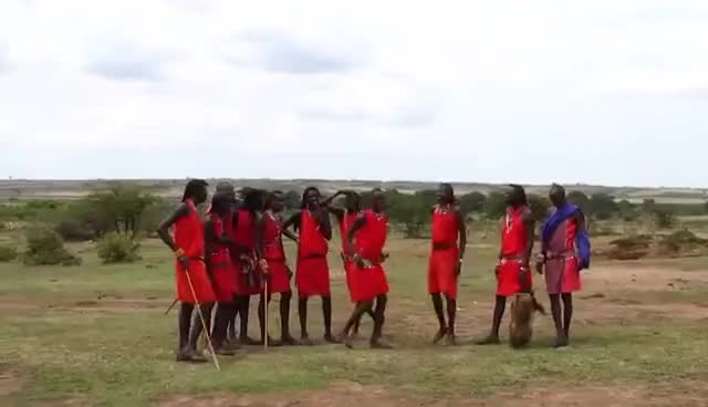 Watch KENYA - Salto Masai GIF on Gfycat. Discover more related GIFs on Gfycat
