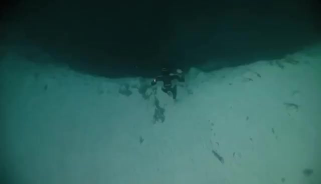 Apnea Diving GIF | Find, Make & Share Gfycat GIFs