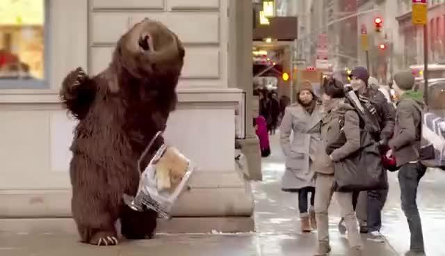 Watch bear GIF on Gfycat. Discover more bear GIFs on Gfycat