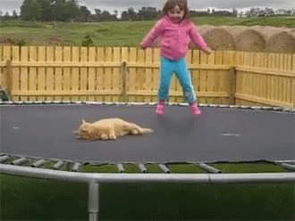 Watch and share かわいい GIFs on Gfycat