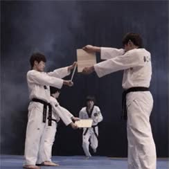Watch and share Tae Kwon Do Star GIFs on Gfycat
