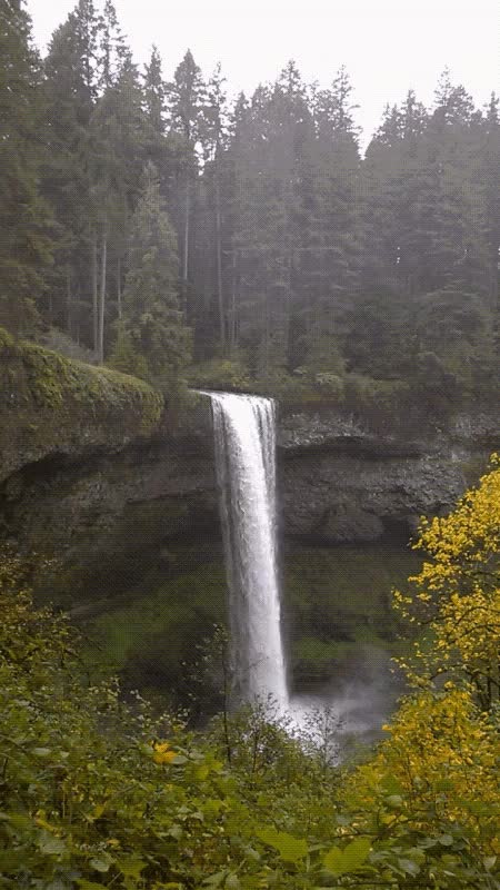 Watch and share South Silver Falls GIFs on Gfycat
