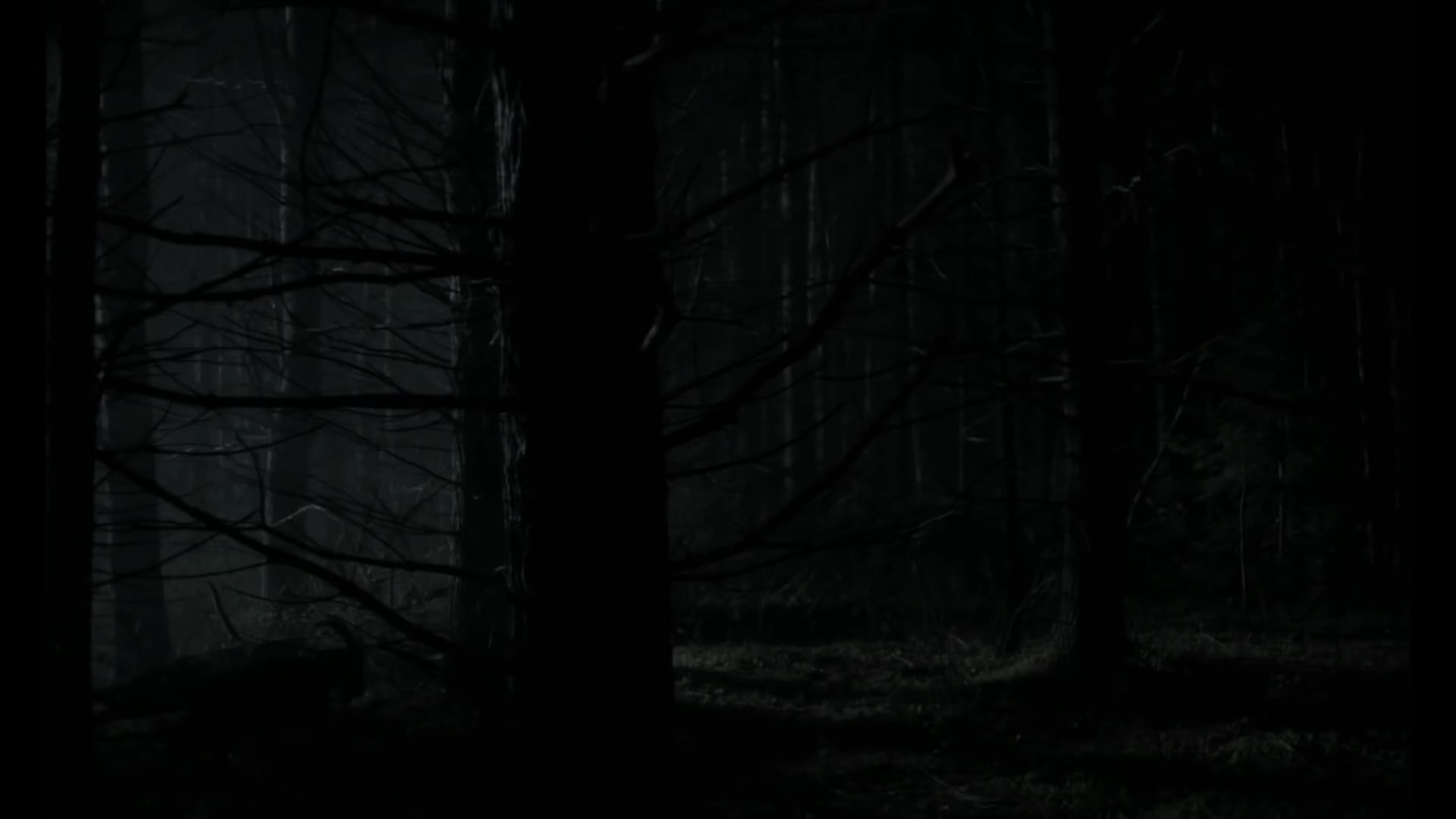 CineShots, the witch, The Witch GIFs