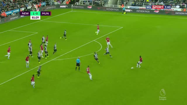 Watch and share Manchester United GIFs and Newcastle United GIFs on Gfycat