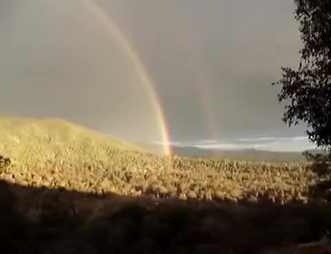 Watch and share Double Rainbow GIFs on Gfycat
