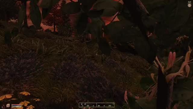 Watch Elder Scrolls IV Oblivion 03.11.2018 - 19.48.37.03.DVR GIF by @kitmitsu on Gfycat. Discover more related GIFs on Gfycat