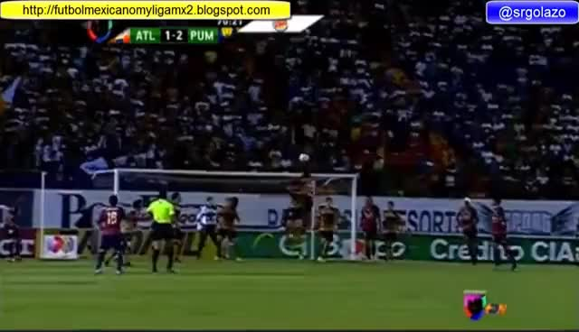 Watch GOLAZO GIF on Gfycat. Discover more atlante, gol, pumas GIFs on Gfycat
