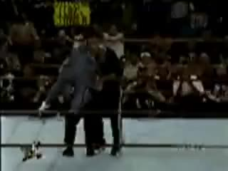 Watch Rock Bottom On Vince GIF on Gfycat. Discover more WWF GIFs on Gfycat