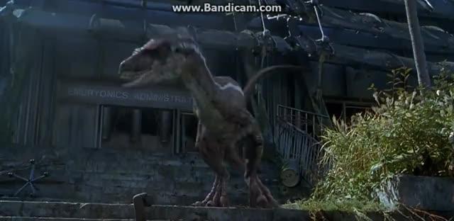 Watch and share Jurassic GIFs on Gfycat
