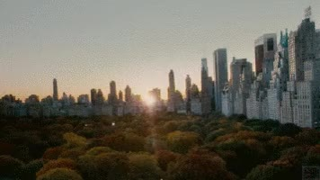Watch central park  GIF on Gfycat. Discover more related GIFs on Gfycat