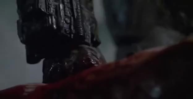 Watch and share The Predator GIFs on Gfycat