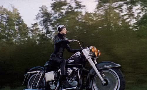 Watch and share Bikers GIFs on Gfycat
