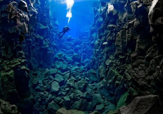 Watch and share SCUBADIVE-INDONESIA GIFs on Gfycat