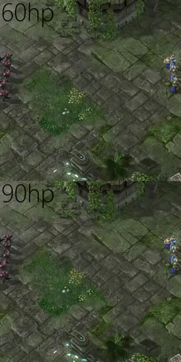 Watch and share Starcraft GIFs by nice__username on Gfycat