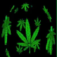 Watch and share Smoke Weed Every Day GIFs on Gfycat