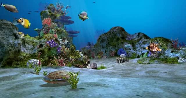 Watch and share Amazingly Beautiful 3D Aquarium Live Wallpaper Wallpaper GIFs on Gfycat