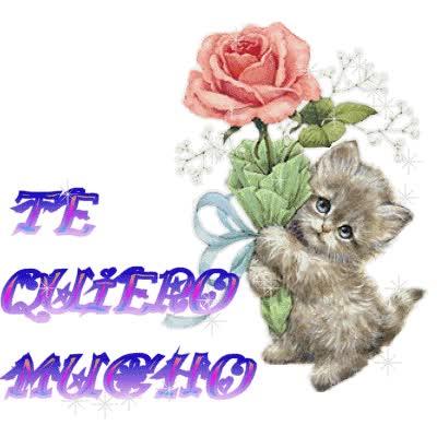 Watch and share Tqm | Gaby Mi Hermanita Feliz Dia Dela Amistad |... animated stickers on Gfycat