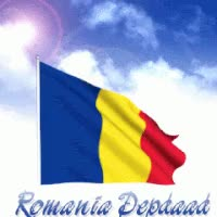 Watch and share 🇷🇴 — Romania animated stickers on Gfycat