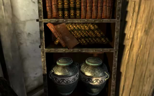 Watch Uncomfortable Books GIF by @darkvioletcloud on Gfycat. Discover more GamePhysics, skyrim GIFs on Gfycat