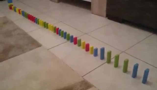 Watch and share Mini Domino GIFs on Gfycat