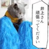 Watch 「井上さん、頑張ってください」のGIF画像 GIF on Gfycat. Discover more イノウエ, 井上 GIFs on Gfycat
