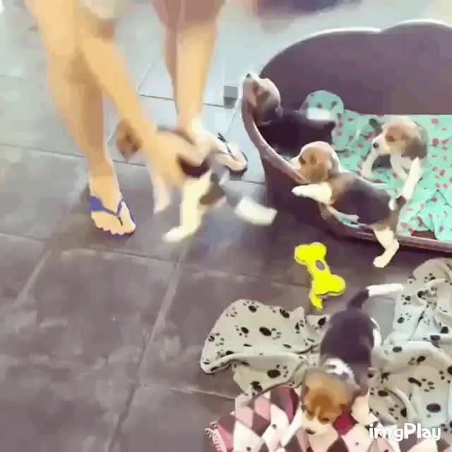 Watch and share more GIFs by likkaon on Gfycat