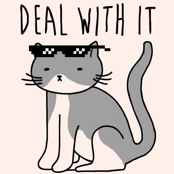 Watch this deal with it GIF by Reactions (@sannahparker) on Gfycat. Discover more cat, deal with it, kitty, look human, sunglasses GIFs on Gfycat