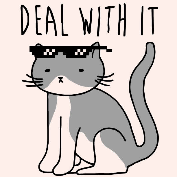 cat, deal with it, kitty, look human, sunglasses, Deal With It Cat GIFs