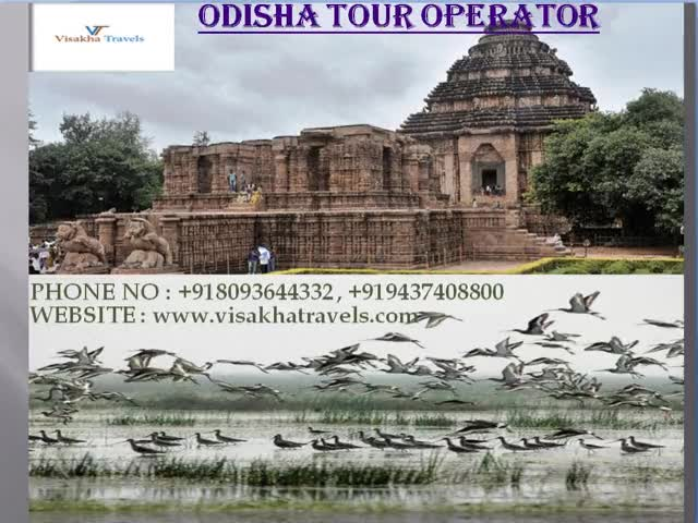 Watch and share Odisha Tour Operator  | Best Tour Operator GIFs by Visakha Travels on Gfycat
