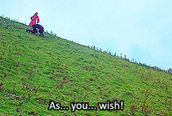 Watch and share Westley X Buttercup GIFs and The Princess Bride GIFs on Gfycat