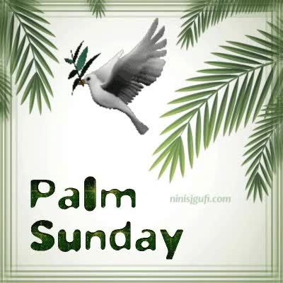 Watch Palm Sunday GIF by ninisjgufi (@ninisjgufi) on Gfycat. Discover more palm sunday GIFs on Gfycat
