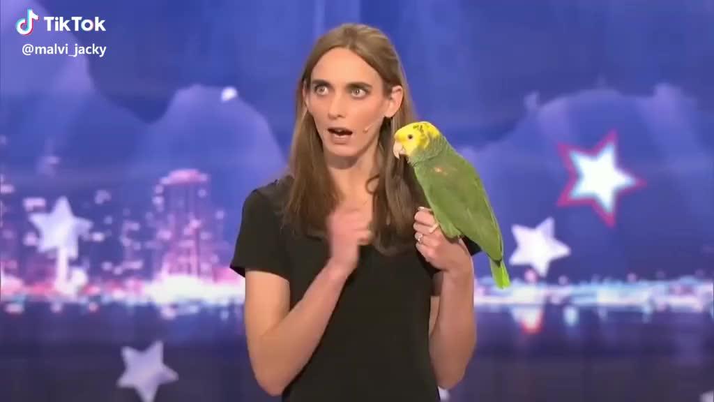 agt, celebs, howie mandel, parrot, pet,  #agt #pet got talent #parrot speaking GIFs