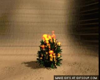 Watch and share Burning Bush GIFs on Gfycat