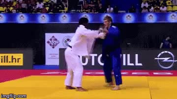 Watch and share Martial Arts GIFs and Black Belt GIFs on Gfycat