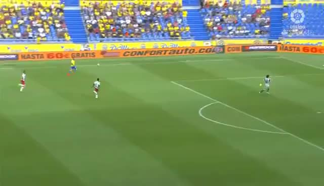 Watch and share Cantadas GIFs and Futbol GIFs on Gfycat