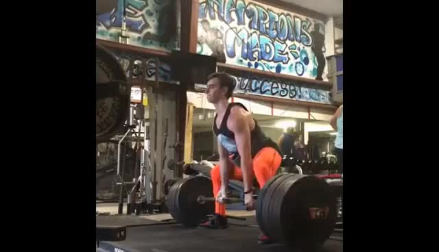 Watch and share CanditoTrainingHQ - CANDITO POWERLIFTING 2016/2017 GIFs on Gfycat