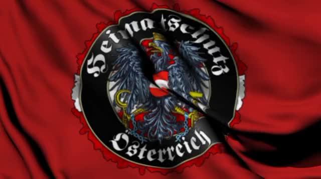 Watch and share FLAG - BETTER AUSTRIA GIFs by ichorzepa on Gfycat