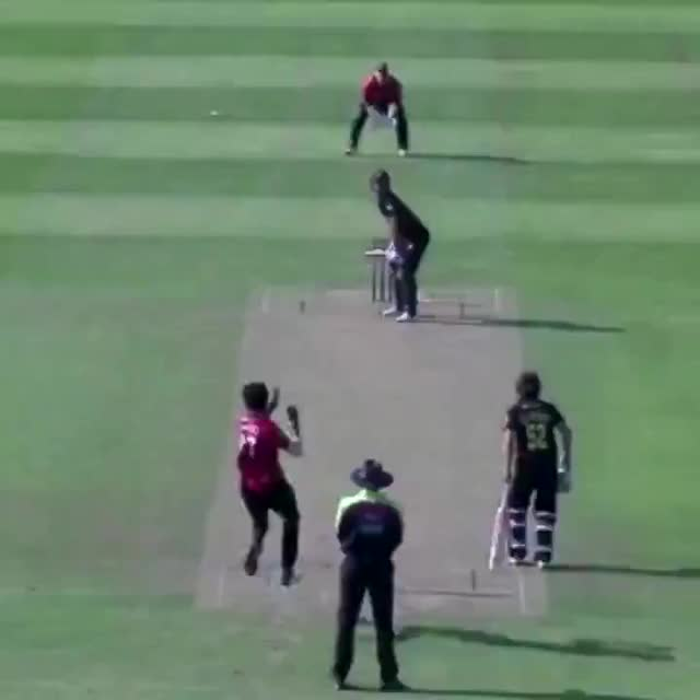 Watch and share Ishant's Brillant Delivery (Sussex Cricket) GIFs on Gfycat