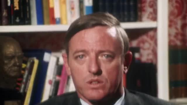 Watch and share Buckley GIFs on Gfycat