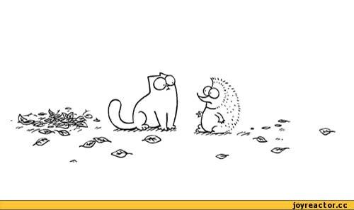 Watch and share Гиф Анимация,гифки - ПРИКОЛЬНЫЕ Gif Анимашки,кот Саймона,simon's Cat GIFs on Gfycat