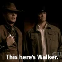 Watch walker texas ranger photo: Walker Texas Ranger Walker-Texas-Ranger.gif GIF on Gfycat. Discover more jared padalecki GIFs on Gfycat