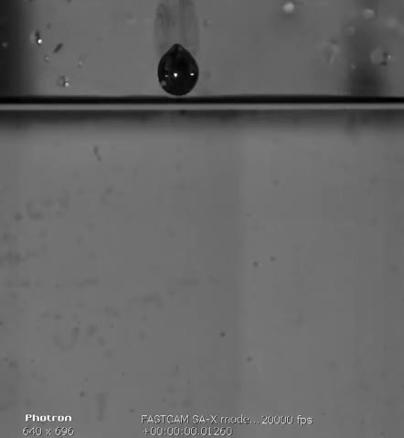 Watch Super Slow Motion from liquid lead in water GIF on Gfycat. Discover more Photron, Slow Motion, Super, blei, lead, liquid, plump, slow, wasser, water GIFs on Gfycat