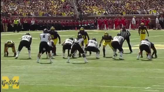 Watch and share Maurice Hurst GIFs and Cincinnati GIFs by MGoBlog on Gfycat